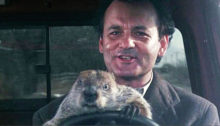 ground hog day
